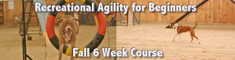 rec-agility-fall2014