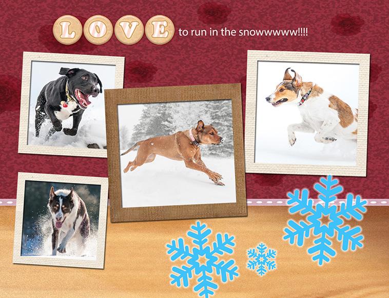 At play (11) RUN IN SNOW